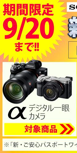 ソニー デジタル一眼カメラ